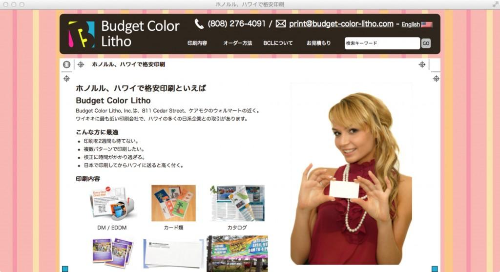 Budget Color Litho社様